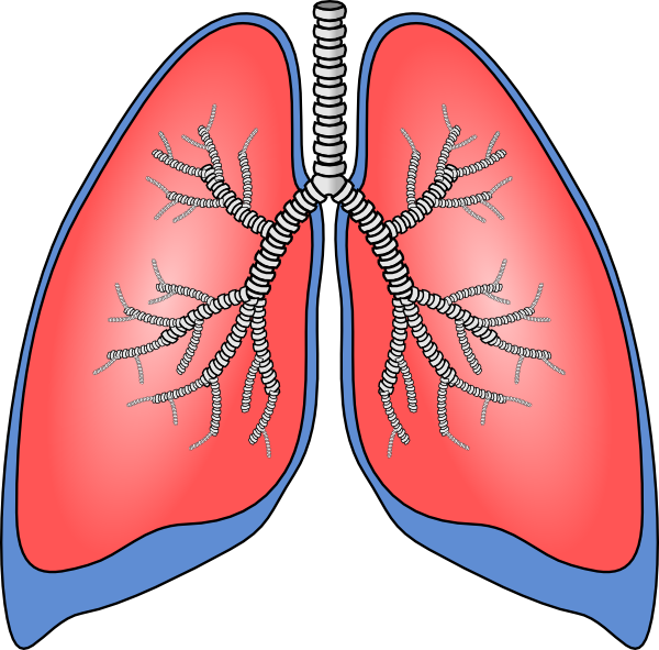 Respiration Clipart | Clipart Panda - Free Clipart Images