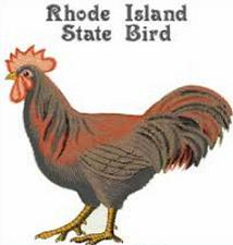 Christmas Tree Rhode Island