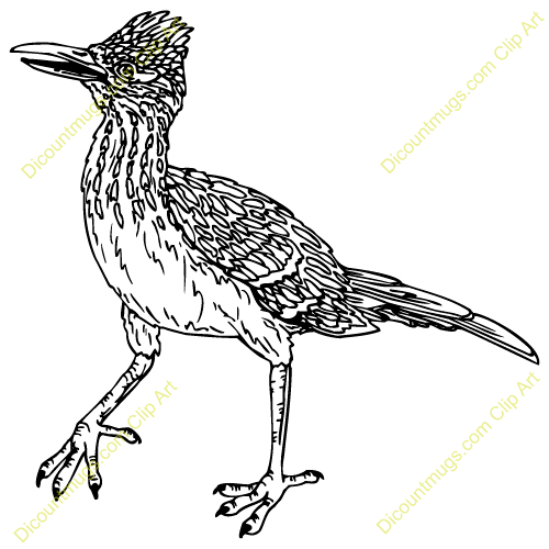 Road Runner Clip Art Black And White | Clipart Panda - Free Clipart ...