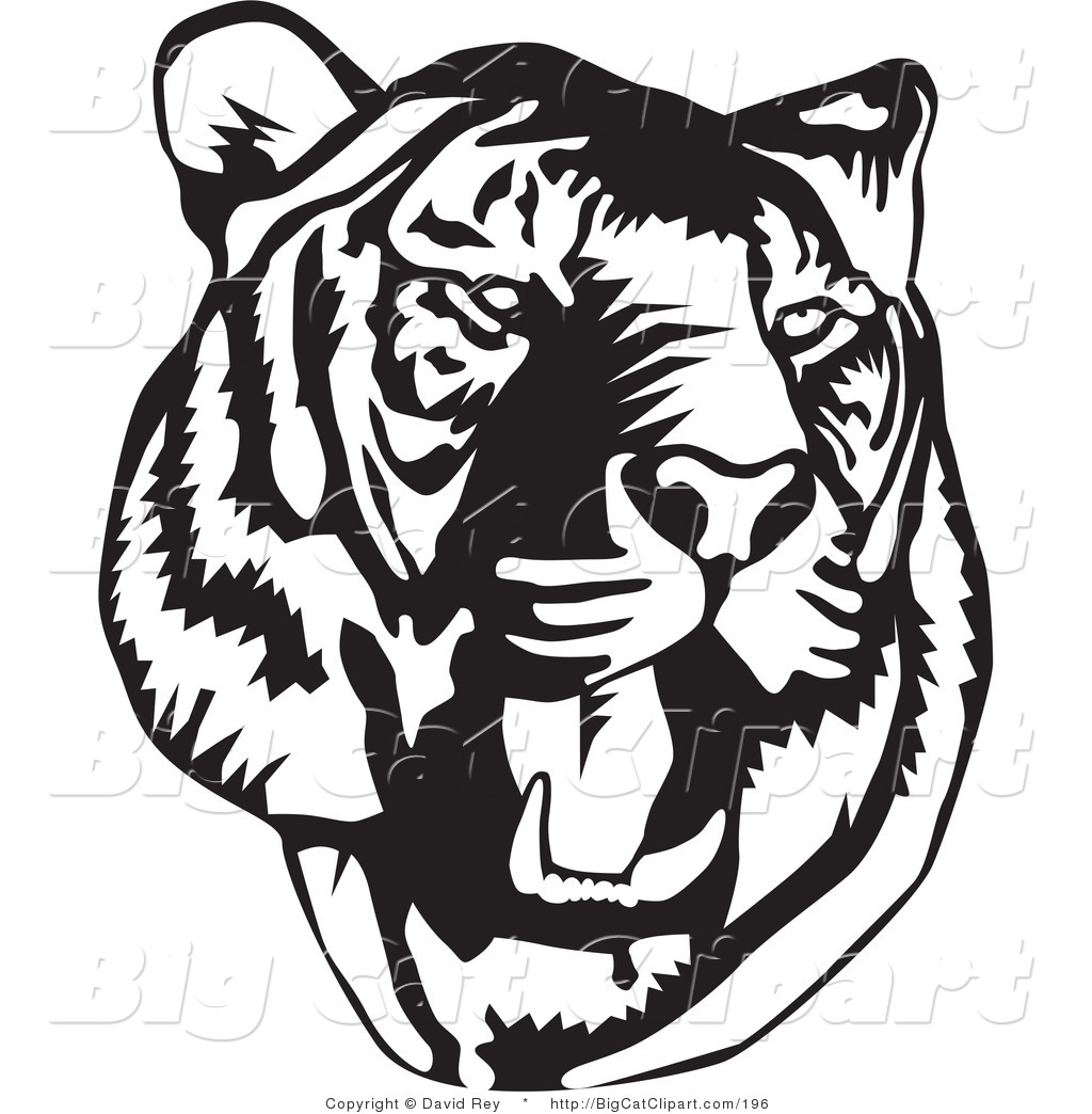 Tiger Face Clipart Black And White | Clipart Panda - Free Clipart ... Tiger Face Black And White Clipart
