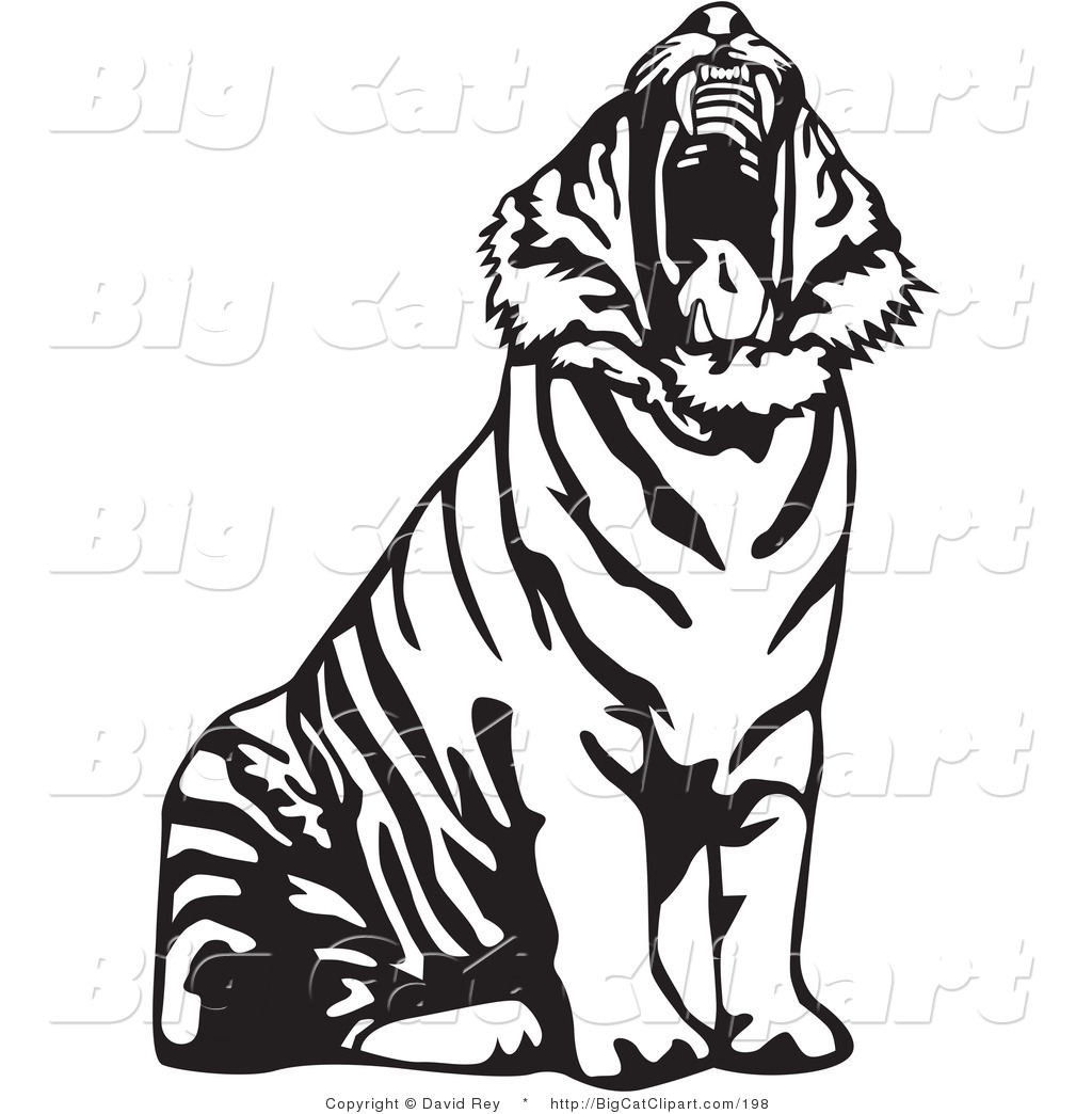 Tiger roar vector - photo#26