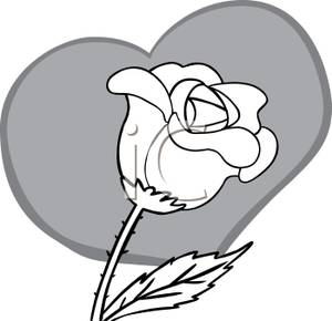 White Rose Clip Art - Synkee