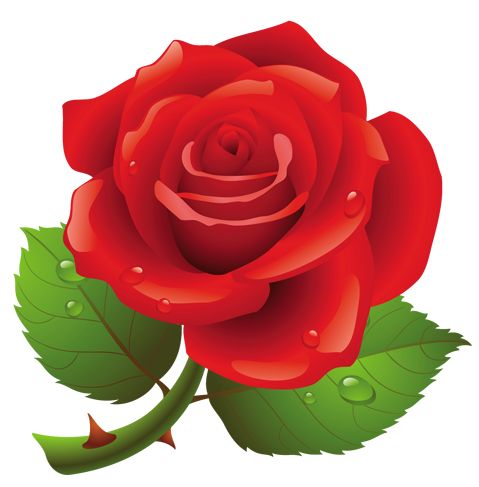 rose%20clipart