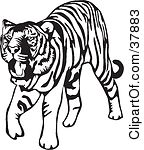 running%20tiger%20clipart%20black%20and%20white