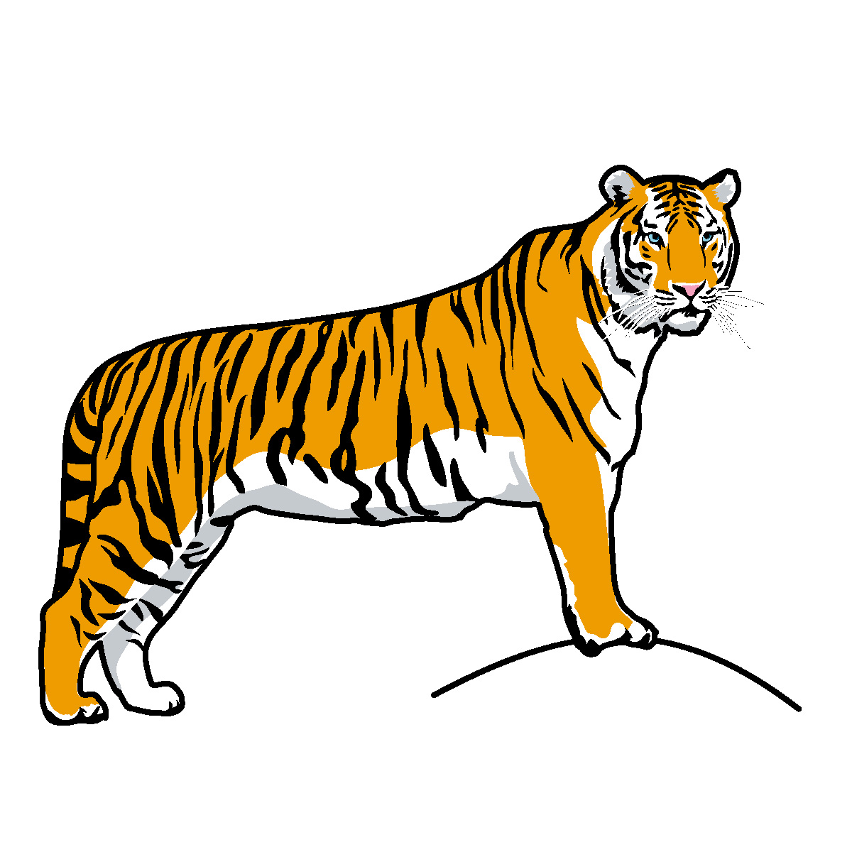 Tiger Clipart running%20tiger%20clipart%20black%20and%20white