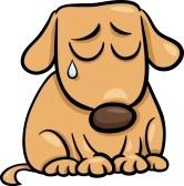 Sad Puppy Dog Eyes Cartoon