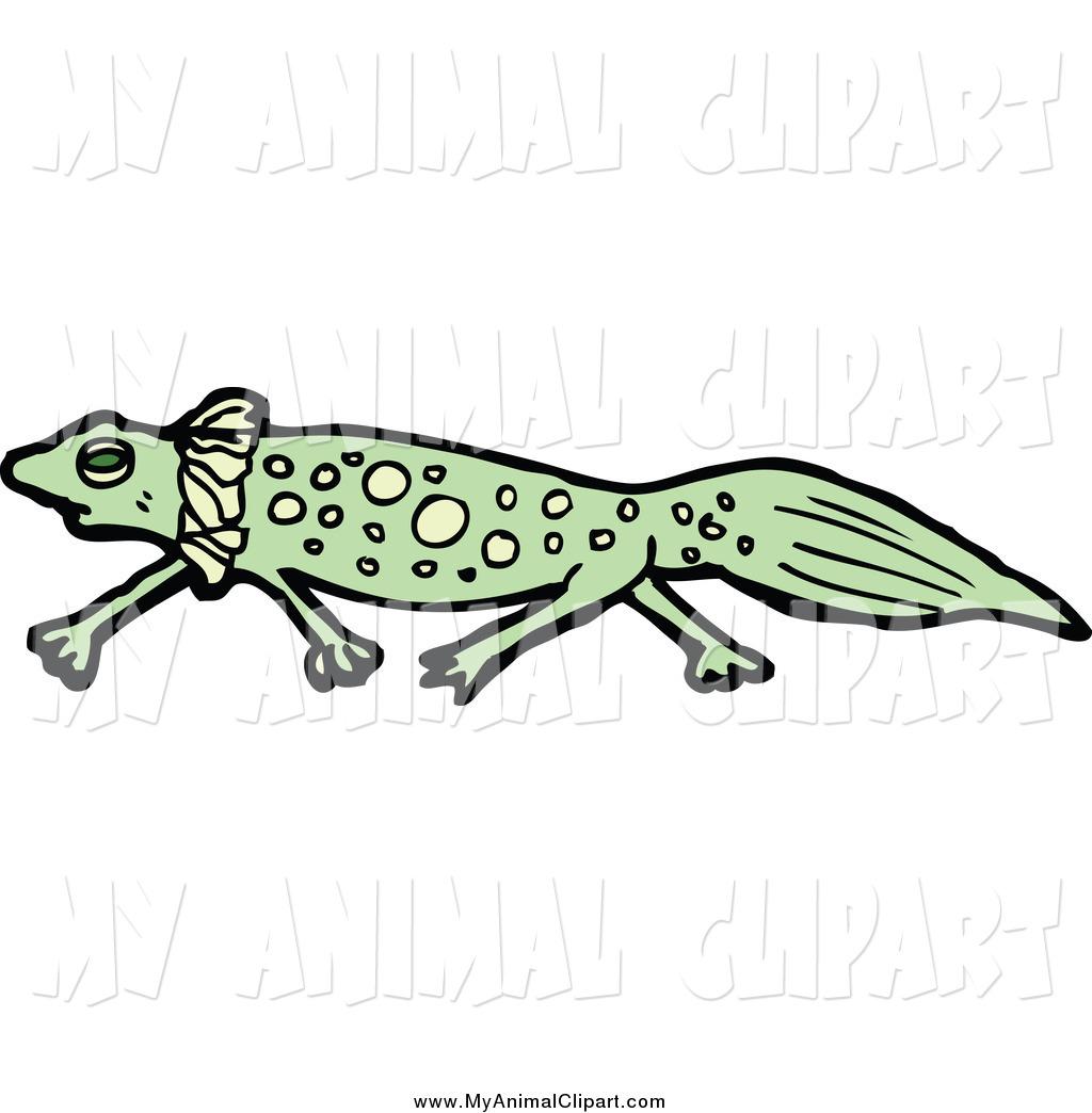 Salamander Clipart
