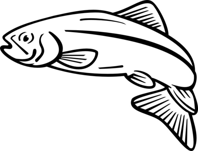 Clip Art Salmon Clip Art salmon clipart panda free images