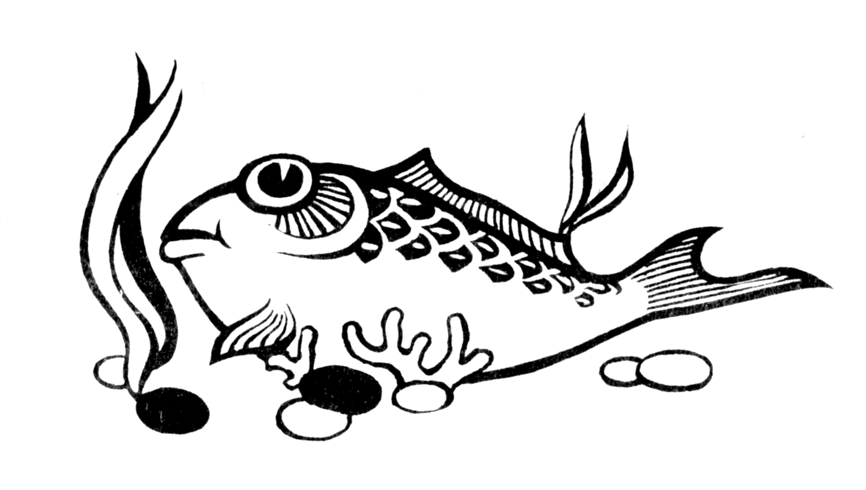 fish34 coloring page fish dm2885 nemesia flower coloring page