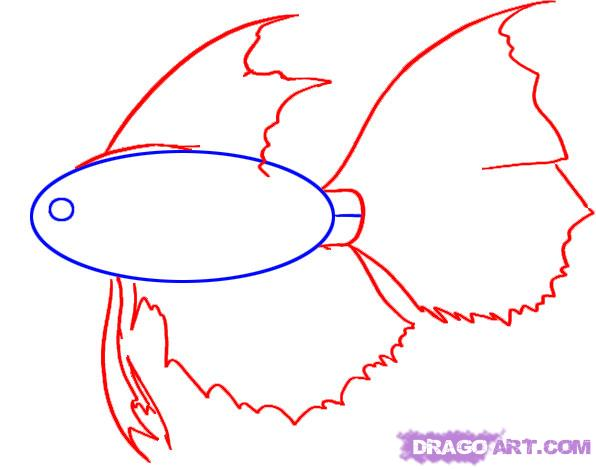 School of fish drawing clipart panda free clipart images for How to draw websites for free