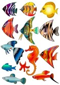 School Of Fish Illustration | Clipart Panda - Free Clipart Images
