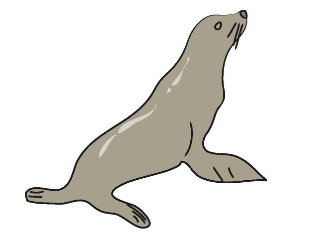 sea lion clip art free clipart panda free clipart images rh clipartpanda com sea lion clip art black and white free clipart sea lion