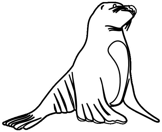 Seal Clip Art Black White Clipart Panda