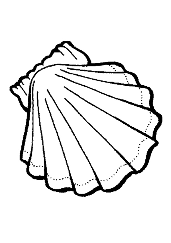 Sea Snail Coloring Page Funny | Clipart Panda - Free Clipart Images