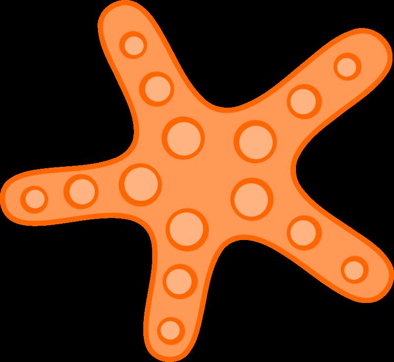 cute starfish clipart clipart panda free clipart images rh clipartpanda com free starfish clipart images