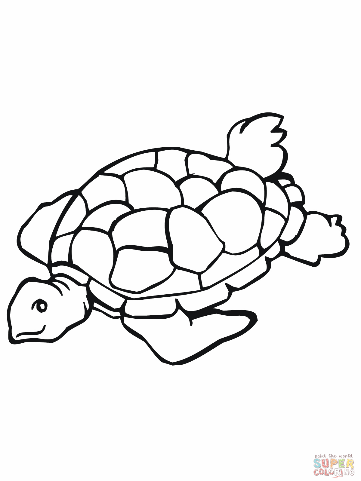 Cartoon sea turtle coloring pages for Turtle color