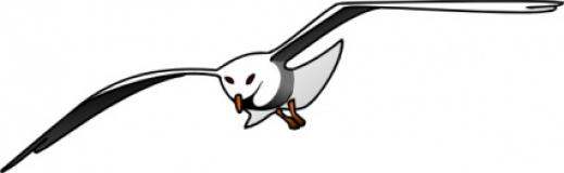 seagull%20clipart%20black%20and%20white