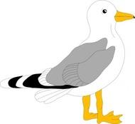 seagull clipart clipart panda free clipart images rh clipartpanda com seagull clipart free seagull clipart silhouette