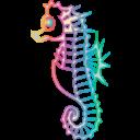 seahorse%20clip%20art