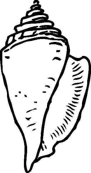 seashell%20clipart%20black%20and%20white