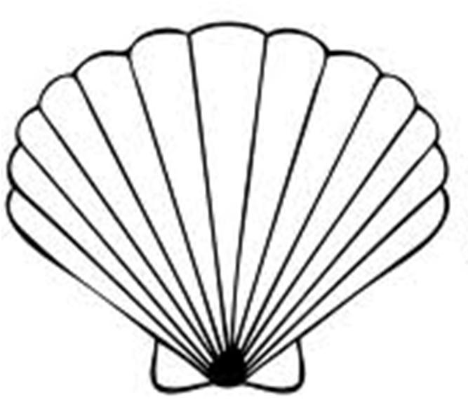 seashell clip art clipart panda free clipart images rh clipartpanda com seashell clip art free printable seashell clipart free microsoft