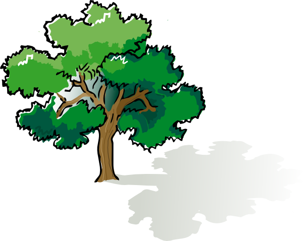 oak tree clipart 10 600x478
