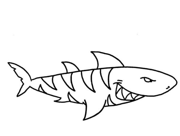 hammerhead shark coloring pages 9