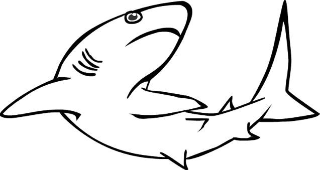 free shark coloring pages - shark coloring pages clipart panda free clipart images