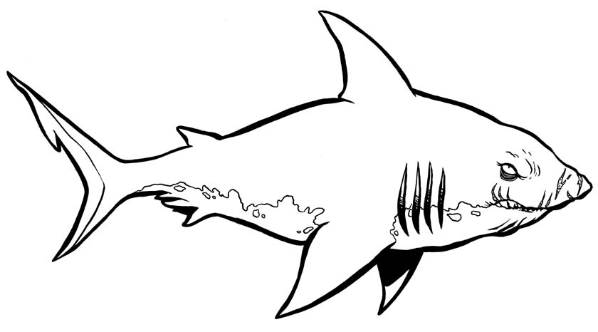 shark coloring pages shark coloring 2jpg 840466 shark color pinterest coloring pages to print coloring pages and sharks - Coloring Pages Sharks Printable