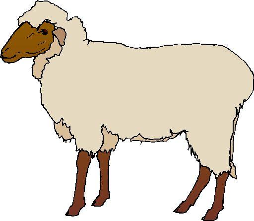 sheep clip art clipart panda free clipart images rh clipartpanda com clip art of sheep pen clip art of shipwrecks