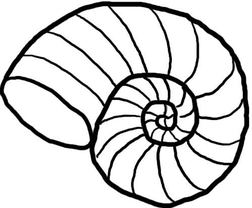 Clip Art Sea Shell Clipart seashell clipart black and white panda free images shell clip art
