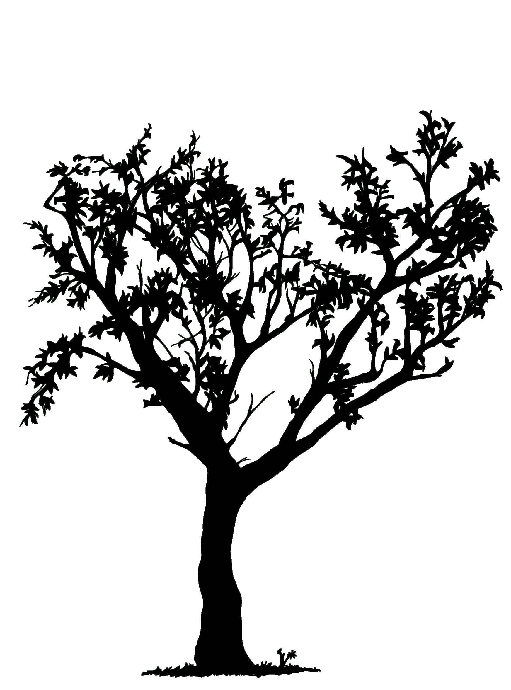 Simple Black And White Tree Design | Clipart Panda - Free ...