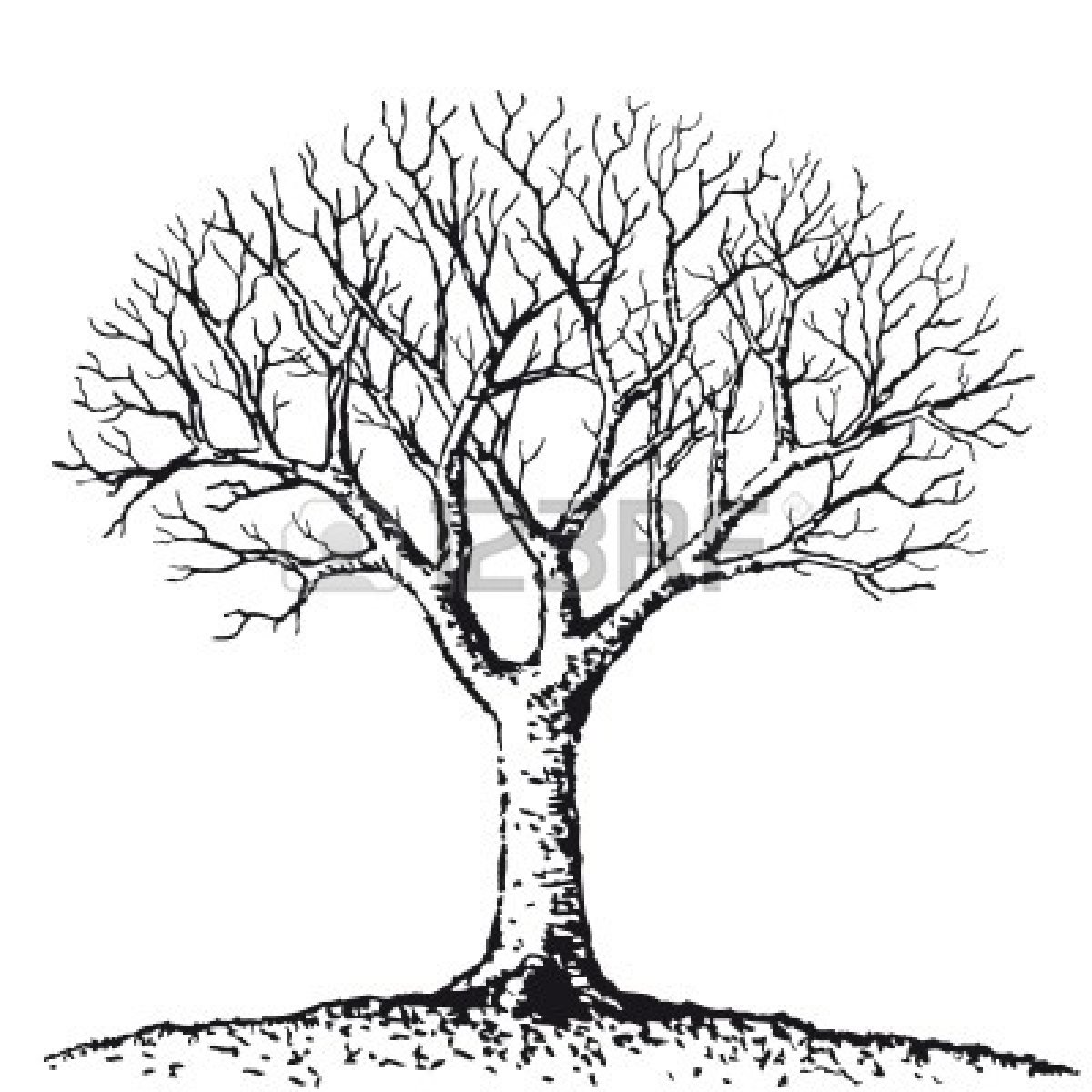 Simple black and white tree drawing