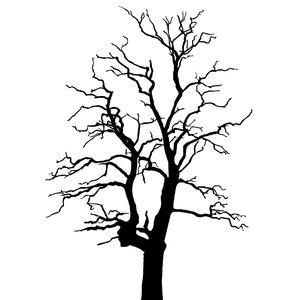 Simple Black And White Tree | Clipart Panda - Free Clipart ...