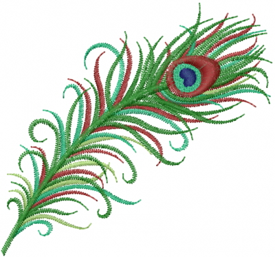Simple Peacock Feather Design Peacock Of Simple Lines