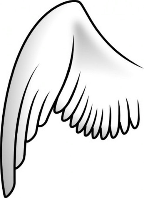 Wings simple. Clipart panda free images