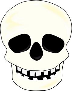 Clip Art Of Human Skeleton