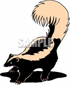 Royalty Free Stock Photography Droopy Tulips Image23776407 moreover Wild Animals Icon Collage 665974 additionally Siluetas De Jovenes Profesionales 1227975 moreover Zorrillo additionally Animals. on cartoon skunk clip art