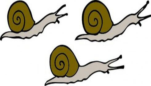 snails clip art clipart panda free clipart images rh clipartpanda com snail images clipart snail clip art images