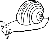 Snail Clipart Images | Clipart Panda - Free Clipart Images