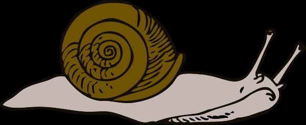 snail clipart clipart panda free clipart images rh clipartpanda com snail clip art black and white free snail clipart