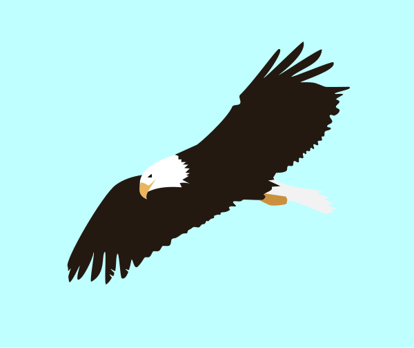 soaring eagle clipart clipart panda free clipart images rh clipartpanda com Eagle In-Flight Clip Art flying eagle clipart black and white