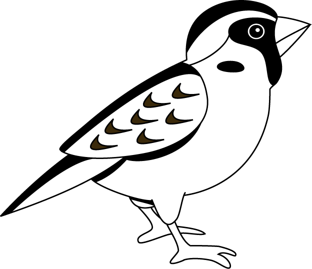 Sparrow 20clipart | Clipart Panda - Free Clipart Images: www.clipartpanda.com/categories/sparrow-20clipart