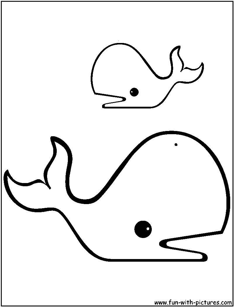 Sperm whale clipart clipart panda free clipart images for Whales coloring pages