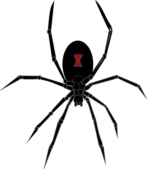 spider%20clipart%20black%20and%20white