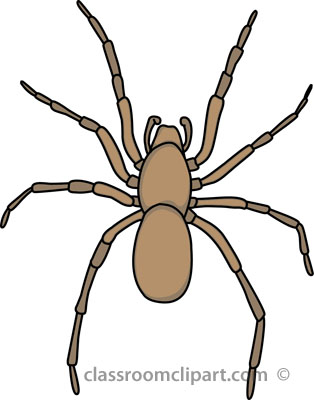Spider clipart for kids - photo#15