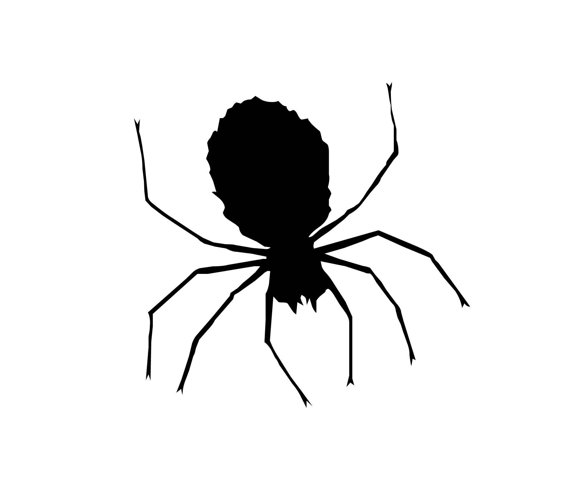 clipart spider - photo #17