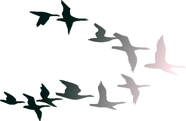 bird flying clipart clipart panda free clipart images seagull clip art public domain seagull clip art pattern