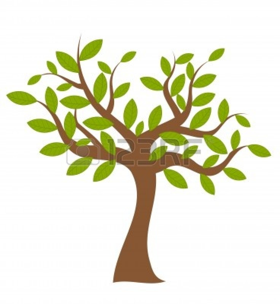 spring-tree-clipart-9423403-spring-tree-with-green-leaves-over-white    Spring Tree Clip Art