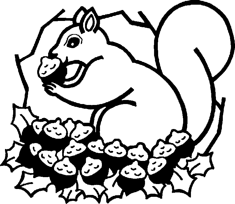 Squirrel Gathering Nuts Coloring Page